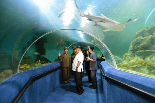 11-North-Korean-Summer-Camp