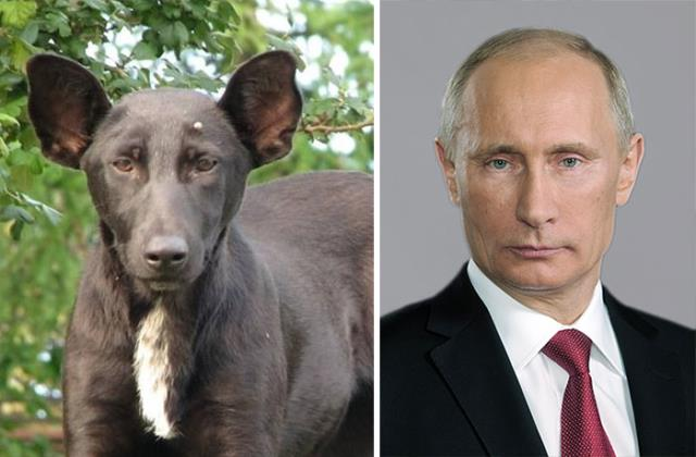 08-Hilariously-Similar-To-Each-Other