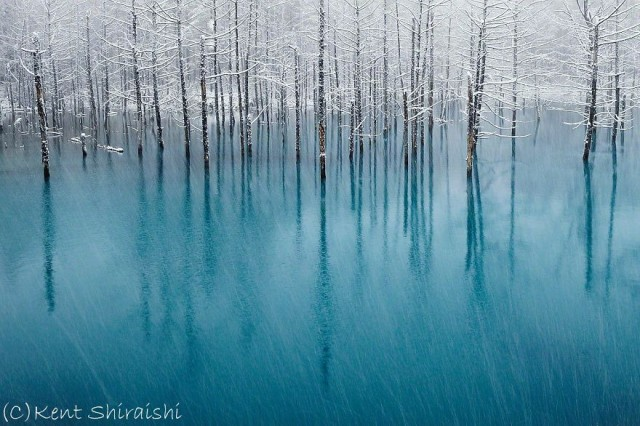 01-blue-pond-first-snowhokkaido