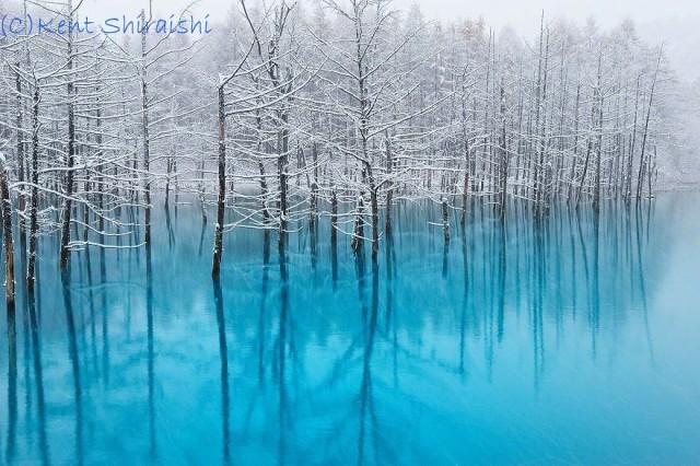02-blue-pond-first-snowhokkaido