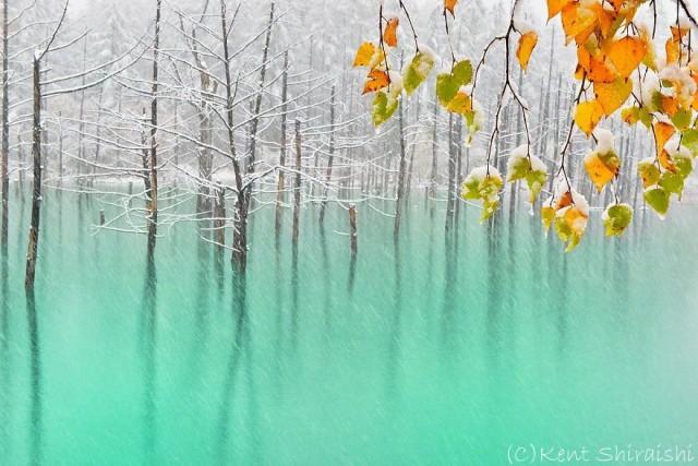 03-blue-pond-first-snowhokkaido