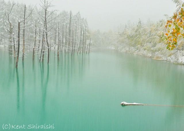 08-blue-pond-first-snowhokkaido