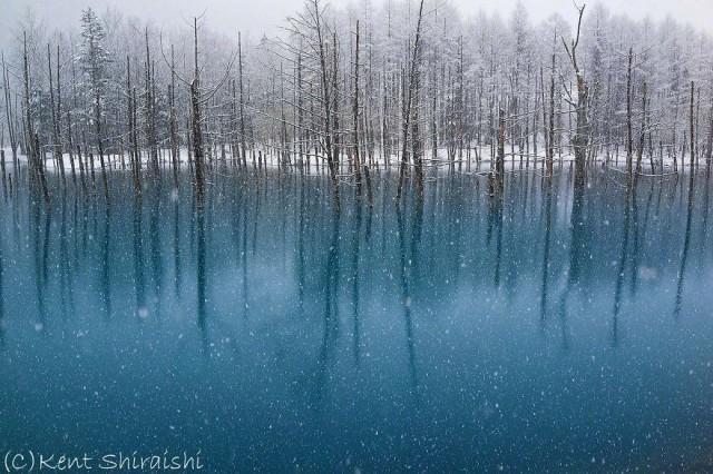 10-blue-pond-first-snowhokkaido